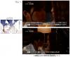 mino_tousaku_14.jpg
